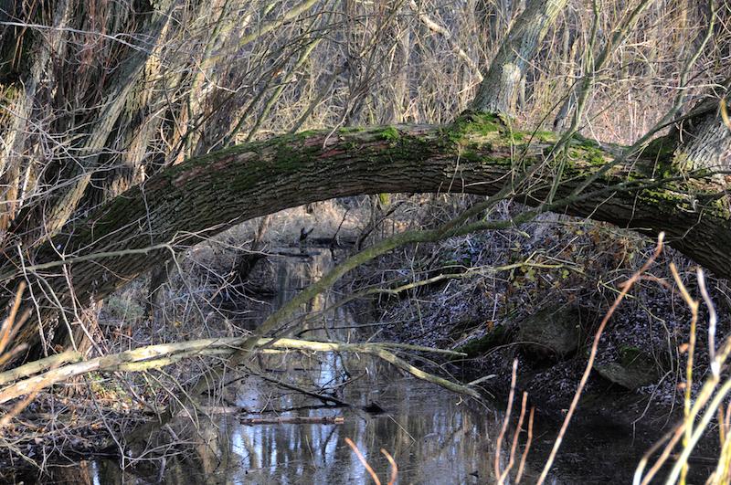 Gnomenbrücke